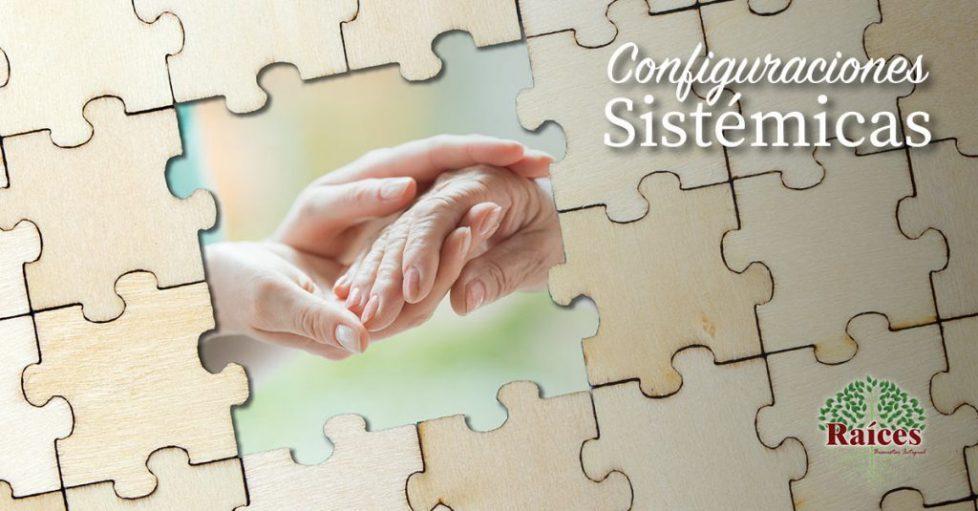 Curso de Configuraciones Sistémicas en Raíces Bienestar Integral